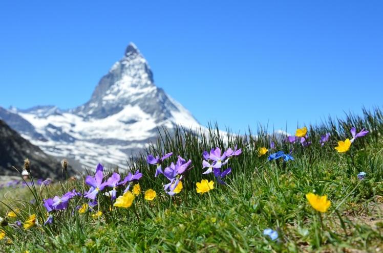 Switzerland_1114x738